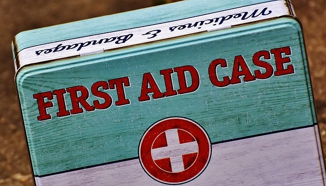 Keep a First Aid Case in your Car Emergency Kit - Emergency Preparedness Tips from Healthy Diet Habits