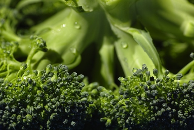 Broccoli Info/Tips from Healthy Diet Habits
