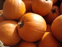 Pumpkin Tips from Healthy Diet Habits