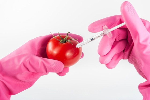 Genetically Modified Food Info. by Healthy Diet Habits