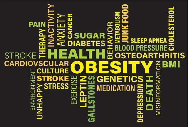 Sobering list of Health Weight Problems that are caused by being overweight or obese.